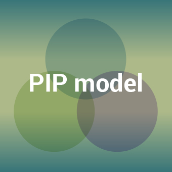 PIP model